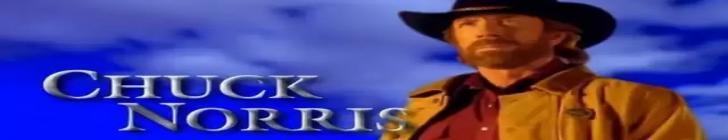 Banner straznikteksasu