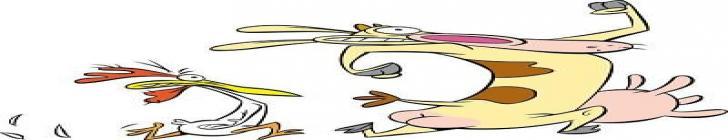 Banner krowaandkurczak