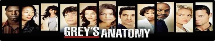 Banner greys_anatomy