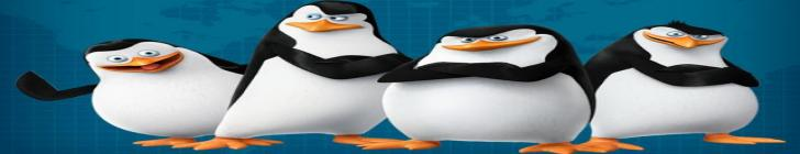 Banner pingwiny44